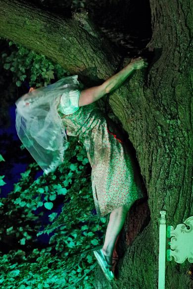 Ovids Traum - Im Garten der Wandlungen